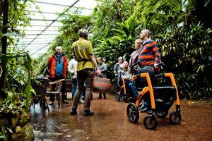 Rollz Motion Viajar con la Enfermedad del Parkinsonn
